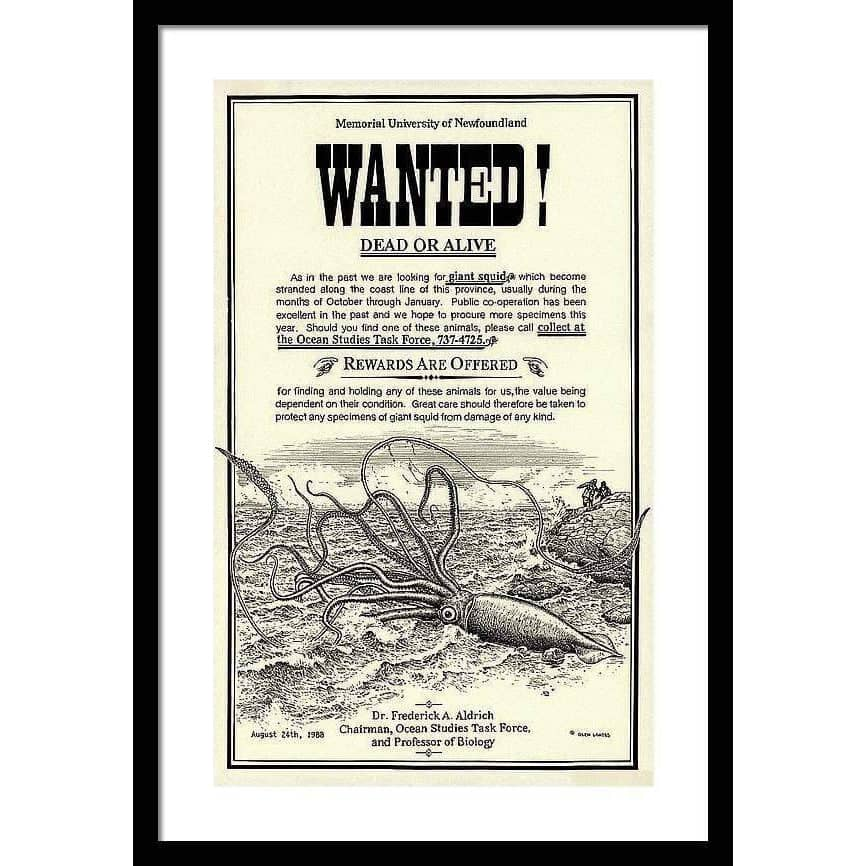 Giant Squid Wanted Poster - Framed