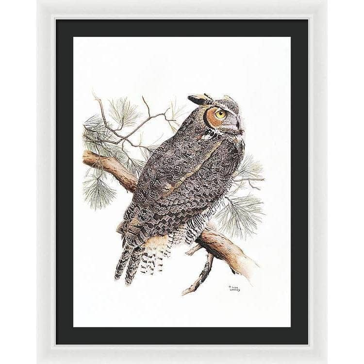Great-Horned Owl - Framed Print