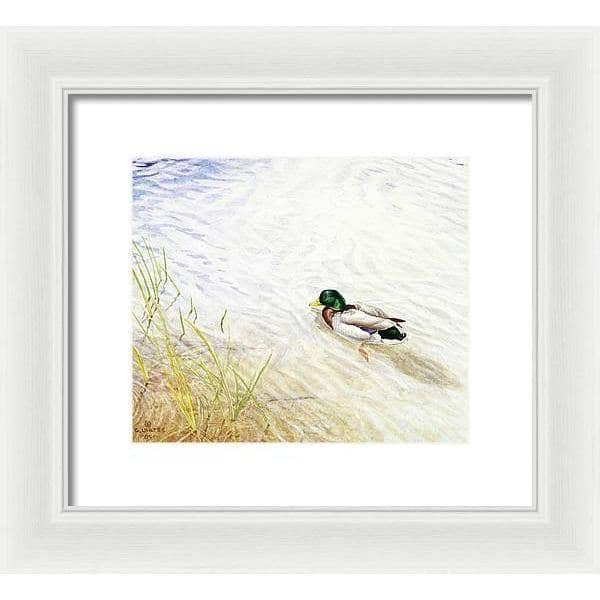 Into The Shallows - Framed Print - The Official Glen Loates Store