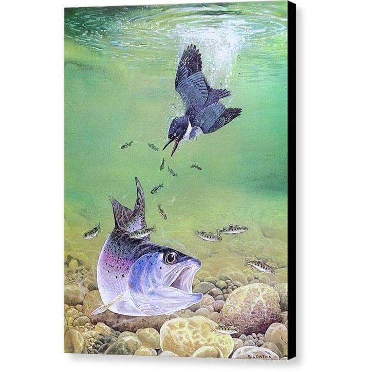 Kingfisher And Rainbow Trout - Canvas Print by Glen Loates from the Glen Loates Store