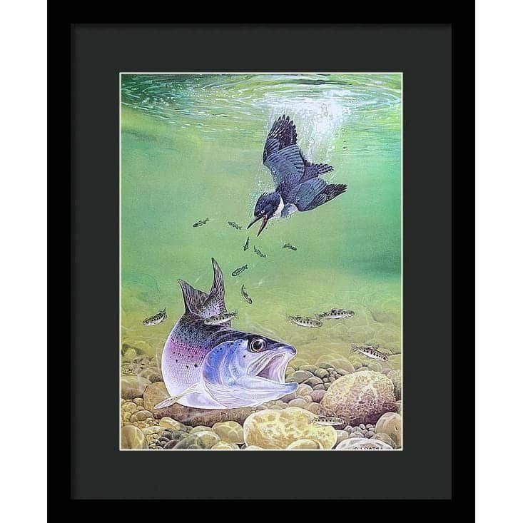 Kingfisher And Rainbow Trout - Framed Print by Glen Loates from the Glen Loates Store