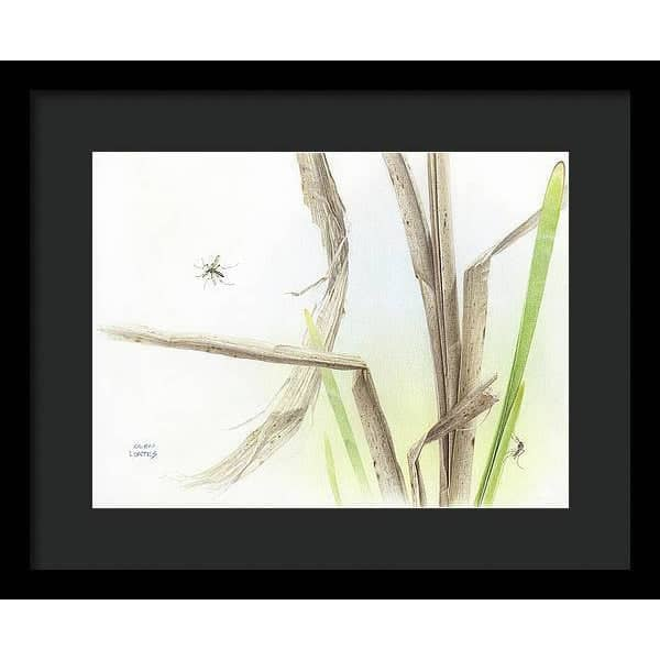 Mosquitoes - Framed Print