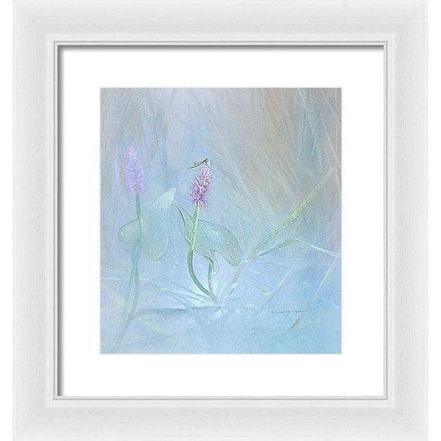 Pickerelweed - Framed Print-Framed Print-The Official Glen Loates Store