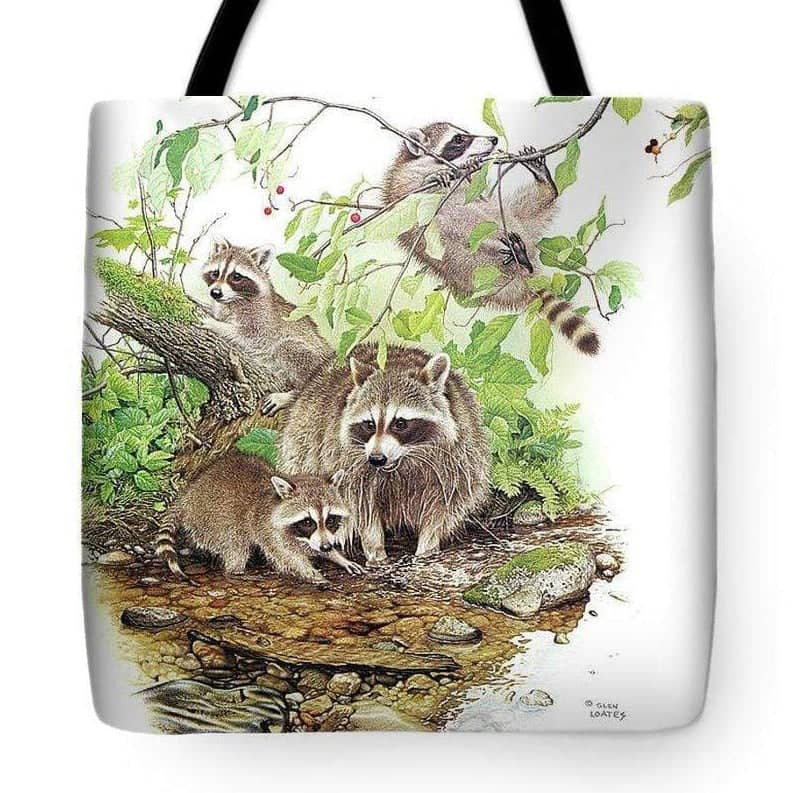 Raccoon Family - Tote Bag by Glen Loates from the Glen Loates Store