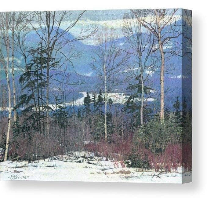 Saddleback - Canvas Print by Glen Loates from the Glen Loates Store