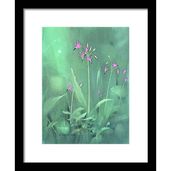 Shooting Stars - Framed Print