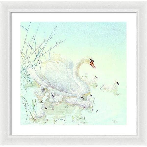 Swan Family - Framed Print-Framed Print-The Official Glen Loates Store
