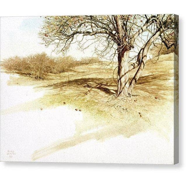 The Apple Orchard - Canvas Print by Glen Loates from the Glen Loates Store