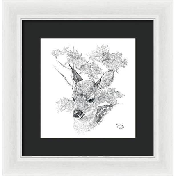 White Tailed Deer Fawn Portrait - Framed Print