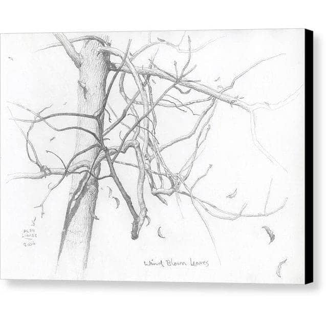 Wind Blown Leaves - Canvas Print - The Official Glen Loates Store