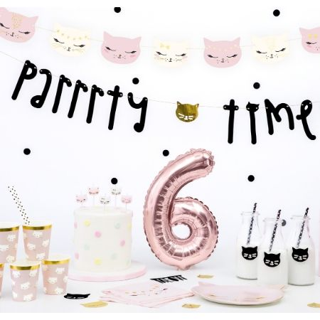 Black Parrrty Time Cat Garland I Pretty Pink Cat Party Decorationsons I My Dream Party Shop UK