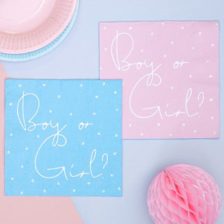 Blue and Pink Boy or Girl Baby Shower Napkins I Baby Shower Tableware I My Dream Party Shop I UK