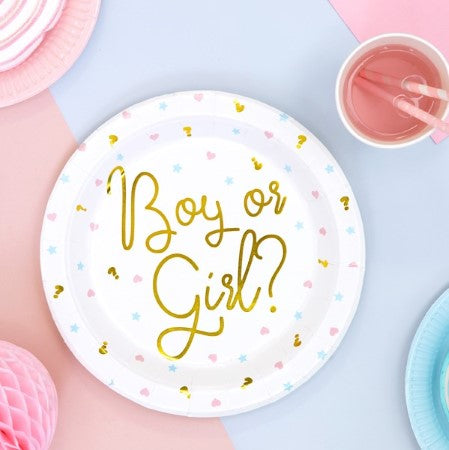 White Boy or Girl Gender Reveal Plates I My Dream Party Shop I UK