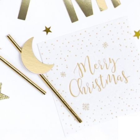 Merry Christmas Napkins I Christmas Tableware I My Dream Party Shop
