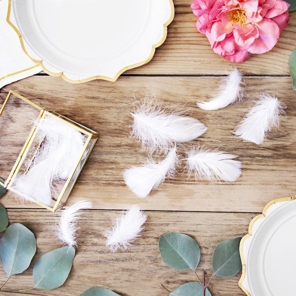 White Craft Feathers 3g I White Feathers for Crafting or Decorating UK