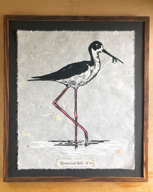 Hawaiian Stilt - A'eo
