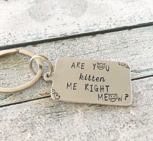 Are you kitten me right meow - Cat keychain