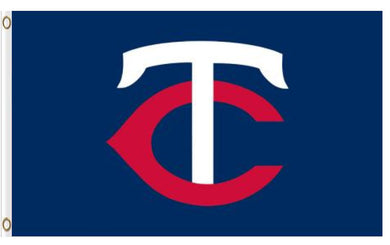 Minnesota Twins Logo Banner flag 3ftx5ft