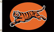 Load image into Gallery viewer, Cincinnati Bengals Flags 3ftx5ft