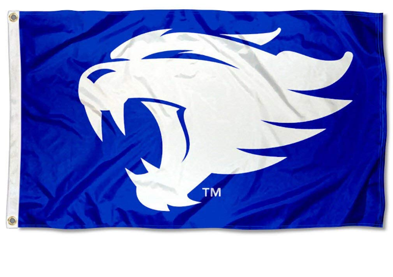 Kentucky Wildcats Logo College Banner Flag 3*5ft