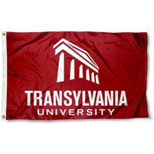 Load image into Gallery viewer, Translyvania Pioneers Flag 3ftx5ft