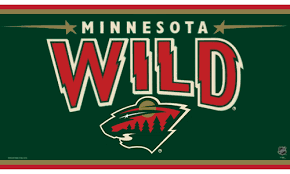 Minnesota Wild flag Polyester 3x5 ft