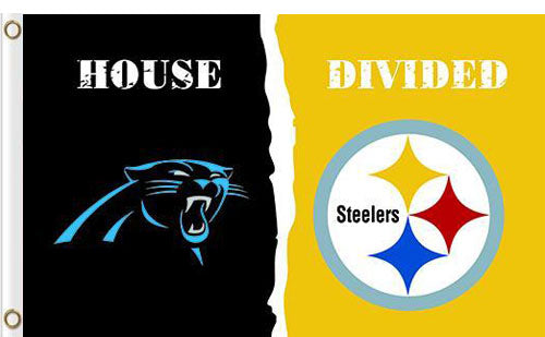 Carolina Panthers vs Pittsburgh Steelers Divided Flag