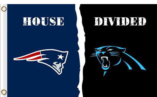 Carolina Panthers vs New England Patriots Divided Flag