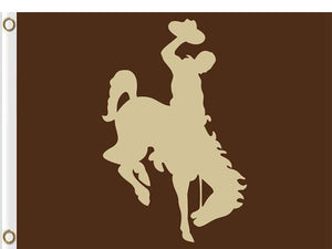 Wyoming Cowboys flag Digital Printing 3x5FT
