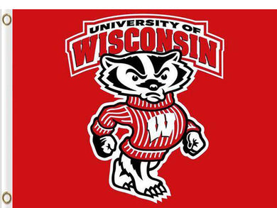 Wisconsin Badgers 90*150 CM Digital Printing