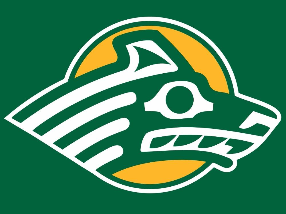 Alaska Anchorage Seawolves Logo Hand Flag 90*150 CM
