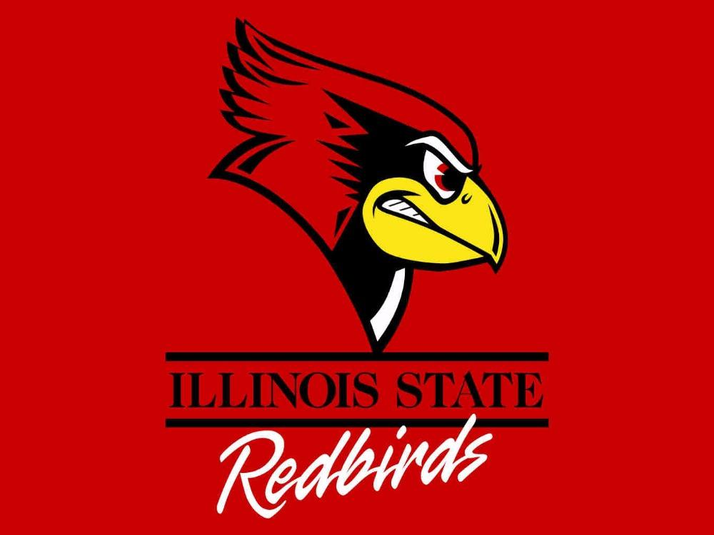 Illinois State Redbirds Hand Flags Banners 3*5ft