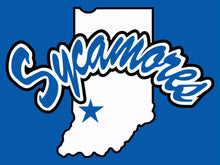 Load image into Gallery viewer, Indiana State Sycamores Hand Flags Banners 3*5ft