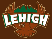 Load image into Gallery viewer, Lehigh Mountain Hawks Hand Flag 3*5ft