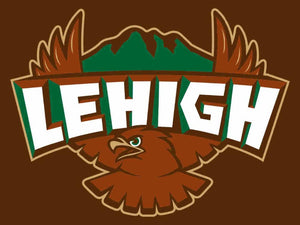 Lehigh Mountain Hawks Hand Flag 3*5ft