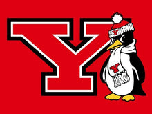 Load image into Gallery viewer, Youngstown State Penguins flag 90*150CM