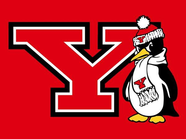 Youngstown State Penguins flag 90*150CM