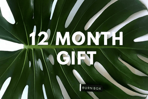 12 Month Gift Subscription