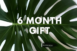 6 Month Gift Subscription