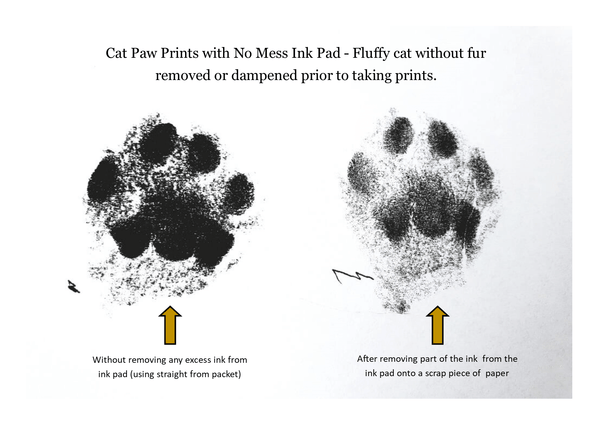 Cat Paw Prints. How to get the Best Prints with a No Mess Ink Pad