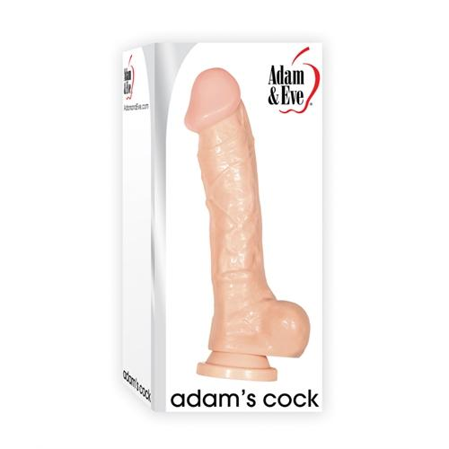 Adam and Eve Adam's Cock