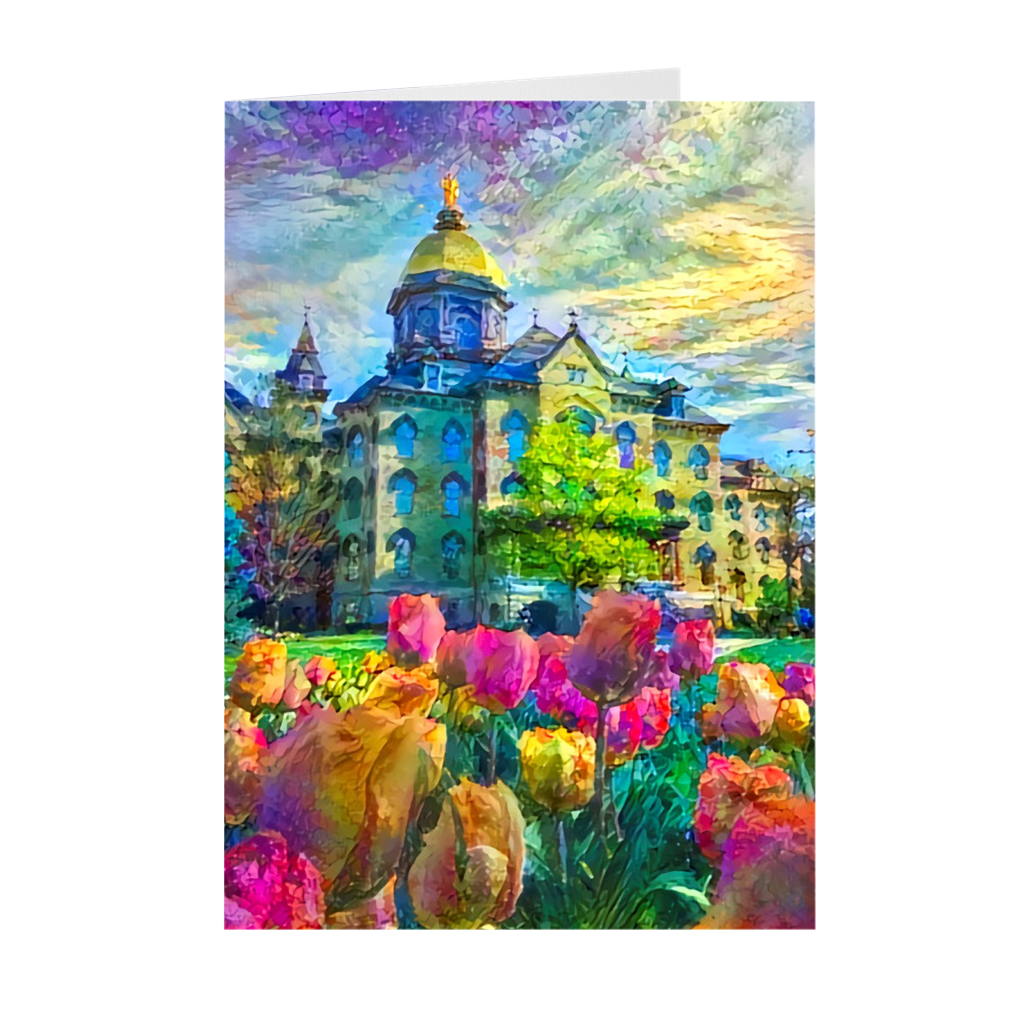 Tulips and the Dome (Cards)