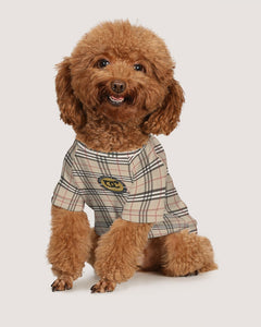 Renaissance Apparel Designer Plaid Doggie Tee