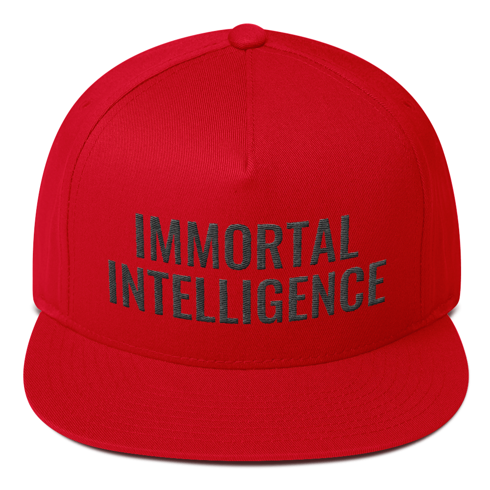 Official Immortal Intelligence Embroidered Hat Flat Bill Cap Hell Razah Music Inc - Heaven Razah