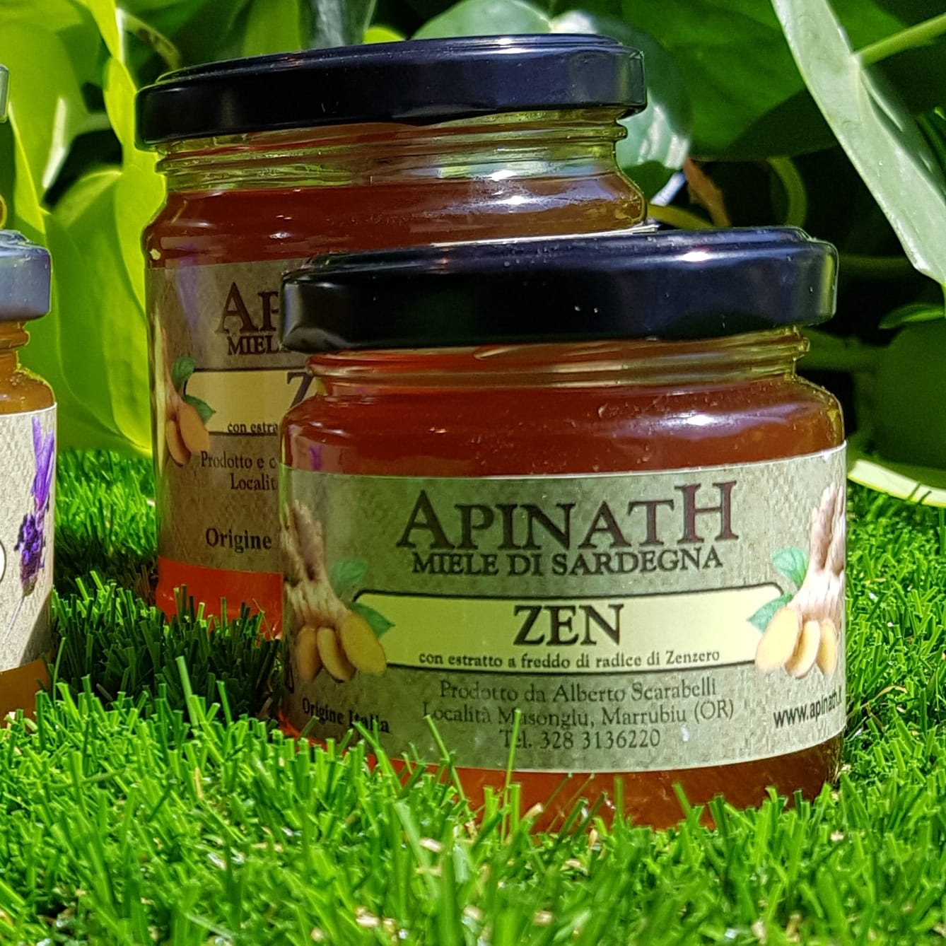 ApinatH Miele di Sardegna Zen - Honey made in Sardinia Zen Ginger