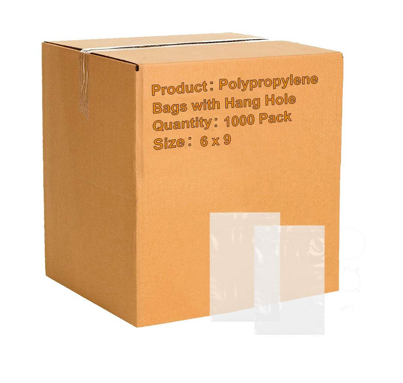 "1000 Pack Clear Poly Zip Locking Bags 6"" x 9"""
