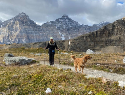 Adventurous Weekend Trips You Can Take With Your Dog