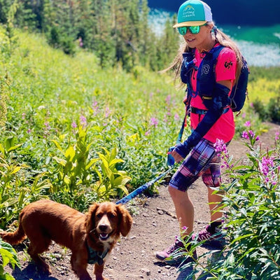 Best Training Tips For Hiking With Your Dog