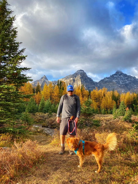 hiking with butch dog larch valley banff alberta