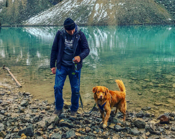 Man and Dog (Duck Toller) At Moraine Lake